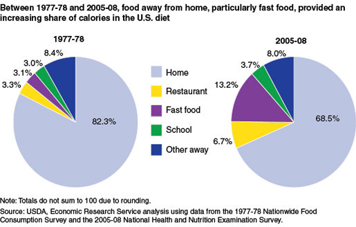 Average American Food Habits, factors that influence american food habits, american eating habits changes and consequences