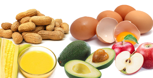 vitamin e foods to increase fertility, foods to increase fertility, foods to increase fertility pregnant, foods to boost fertility, natural foods to increase fertility