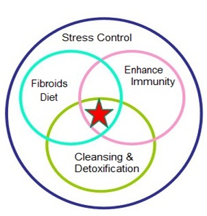 holistic approach to treating uterine fibroids, holistic treatment for uterine fibroids, treating uterine fibroids naturally, treating uterine fibroids without surgery