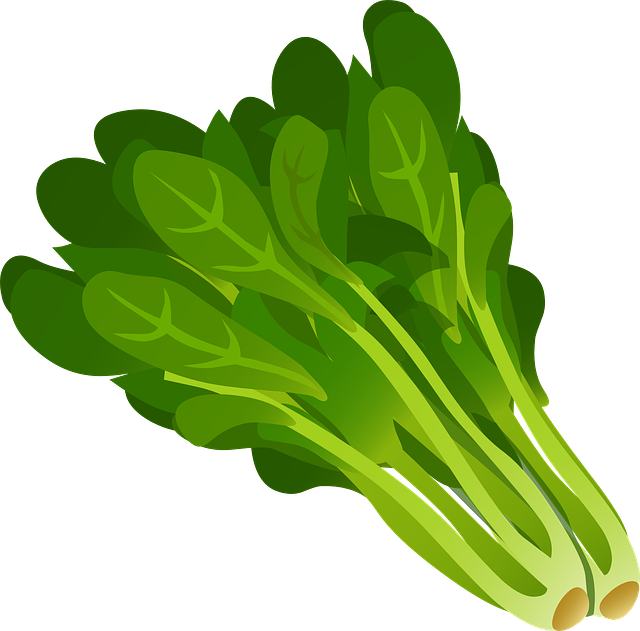 spinach, spinach stress relief, fertility boosting foods, fertility foods for women