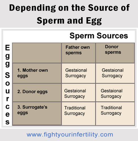 surrogacy types, surrogacy and its types, how does gestational surrogacy work, what is surrogacy process, what is gestational surrogacy, traditional surrogacy process