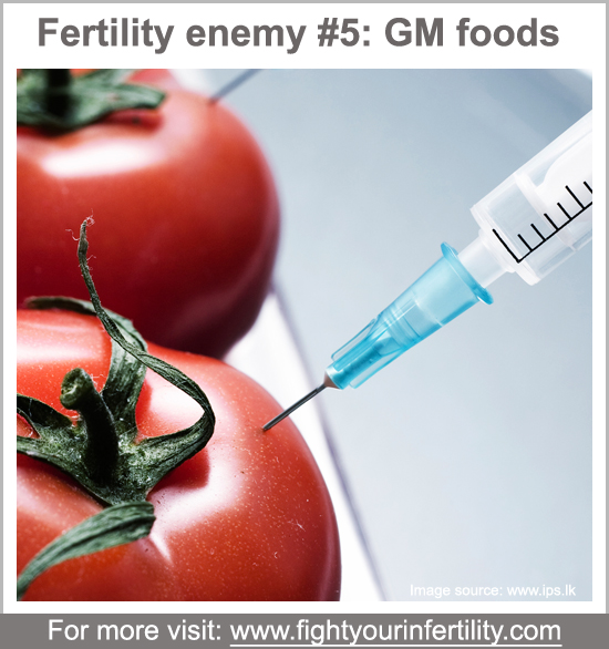 gm foods infertility, genetically modified food infertility, gm foods cause infertility, what gmo ingredients should you avoid and why, worst foods for fertility, foods bad for fertility