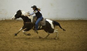 rodeo-646651_640
