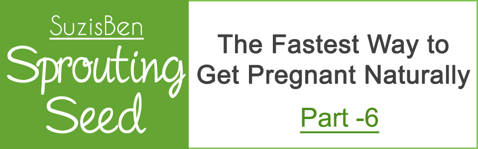 The Fastest Way to Get Pregnant Naturally