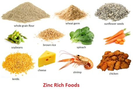 Vegetarian Foods High Zinc Content