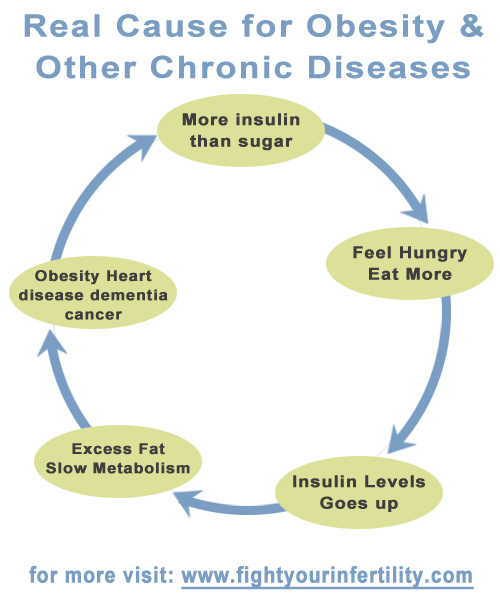 Vicious Circle Of Insulin Resistance, Real Cause for Obesity, real cause of obesity, main cause of obesity, most common causes of obesity, cause of chronic disease, leading cause of chronic disease, main cause of chronic disease, major cause of chronic disease