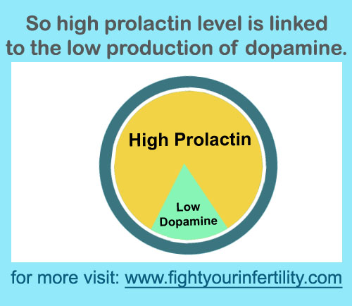 high prolactin levels dopamine, low production of dopamine, decreased production of dopamine
