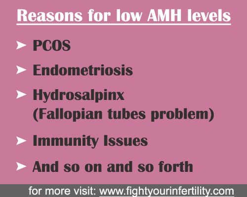 reasons for low AMH levels, low amh levels and pregnancy, what causes low amh