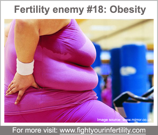 obesity and infertility, obesity causes infertility, relationship between obesity and infertility, why does obesity cause infertility