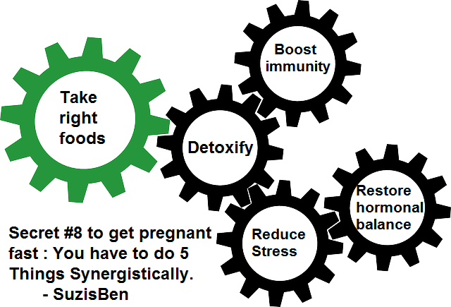 Secret Eight to get pregnant fast Do 5 Things Synergistically